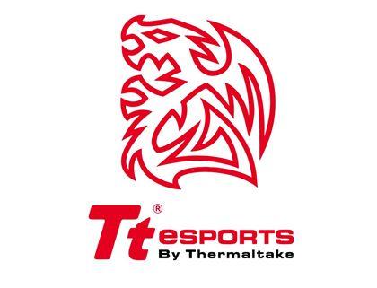 Imagen para el fabricante TTESPORTS